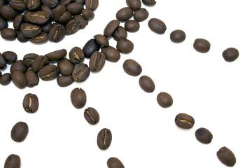Coffee Beans Sun