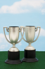 Two trophies on green with sky background