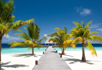 Maldivian Ocean Flair