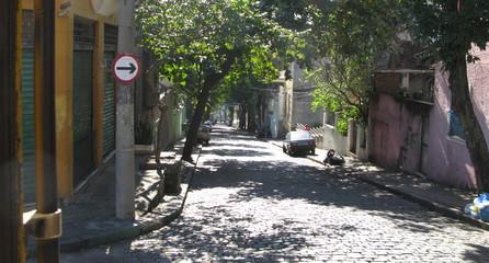 Rue pavée avec arbres, Rio de Janeiro, Brésil.