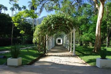 Allée dans un jardin, Rio de Janeiro, Brésil.