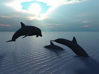 Photo sur Aluminium Dauphins Three dolphins floating at ocean (control light)