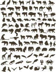 100 black silhouettes of animals