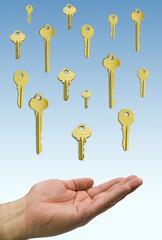 hand holding a rain of golden  keys