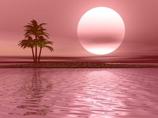 Paesaggio con palma