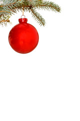 Bright red Christmas bauble on tree
