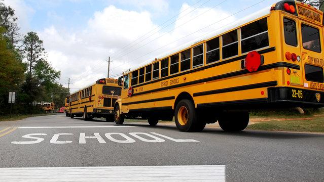 School buses lined up at school crosswalk