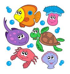 Cute marine animals collection