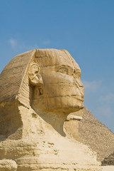 Wall Murals Egypt The eternal gaze of the Sphinx