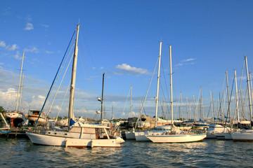 Boats, Tiber River, Fiumicino, Italy