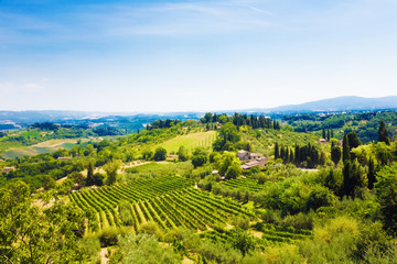 Wall Mural - Traditional Toscana Italy landscape. Hills, fields and sky.