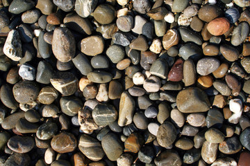 wet pebbles in waves of the Black Sea