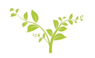 vecteur série - branche d'arbre ou jeune pousse vectorielle
