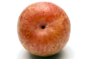 pluot hybrid fruit plum apricot sometimes called dinosaur eggs