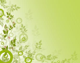 Grüne Pflanzen,Hintergrund