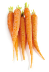 Several fresh carrots isolated on white background