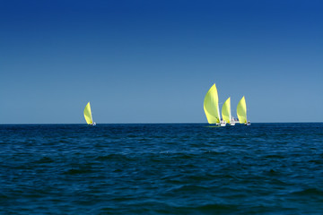 sailing yachts with spinnakers