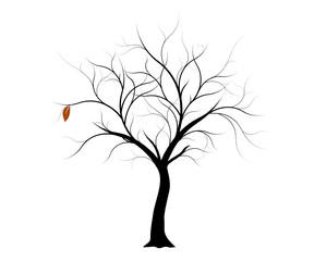 vecteur série, arbre d'automne vectoriel  - Vector autumn tree