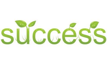 Wort success mit Blättern und Wassertropfen