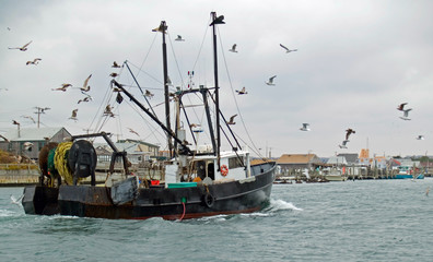 Commercial fishing boat returning to harbor