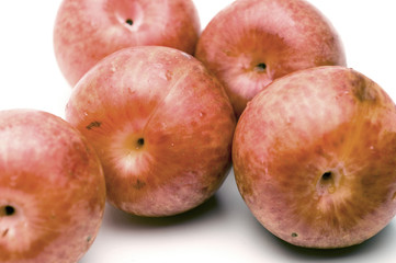 pluots hybrid fruit plum apricot sometimes called dinosaur eggs