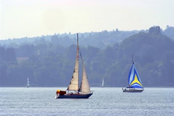 Sail Boats on Lake Constance