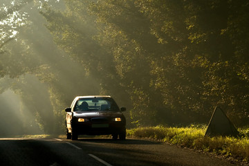 Sunlight, summer evening, road and moving car