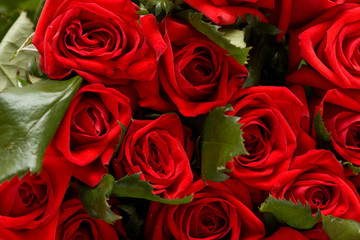 bunch of red roses background, macro shot