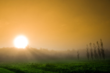 beautiful sunrise over a field in the countryside