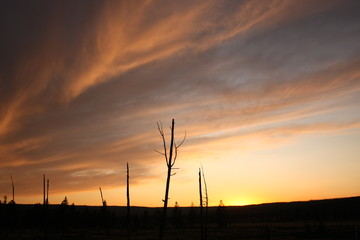 Crépuscule à Yellowstone