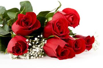 Rote Rosen sind gern geschenkte Blumen