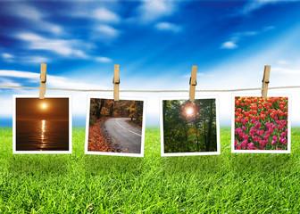 Natural polaroid photo concept...