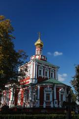 church in novodevichiy monastery 8