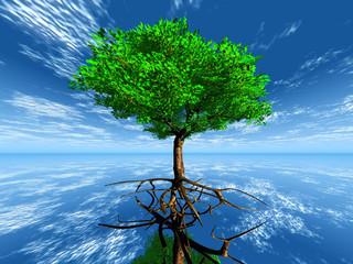 arbre vert