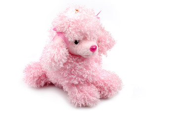 Toy - poodle