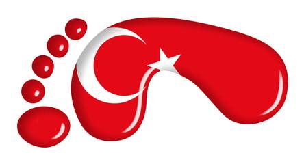 Impronta turca