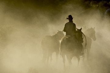 Single Cowboy with rope and horses in the dust Wall mural