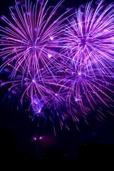 Violettes Feuerwerk in einem dunklen Nachthimmel