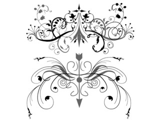 Floral design elements. Vector available.