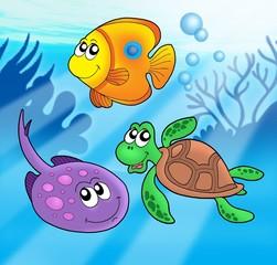 Cute marine animals 3