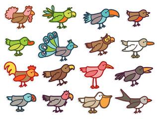 birds - color