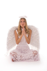beautiful angel portrait while praying on white