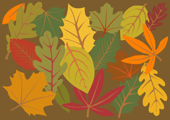 vector illustration background of colorful autumn leaves