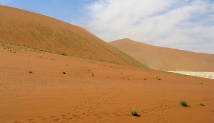 dunes (namib)