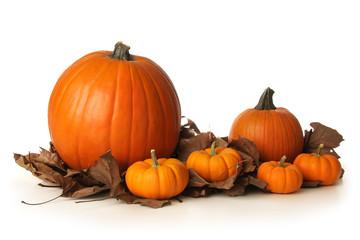 Pumpkins on leaves