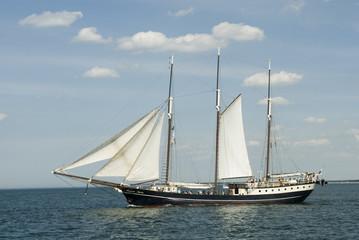 hansa sail festival rostock