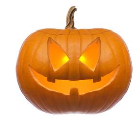 orange halloween pumpkin isolated on white close up