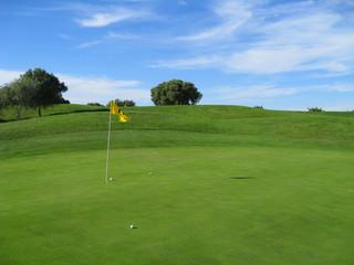 Golf - Golfplatz Green