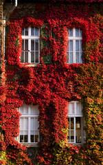 House of autumn