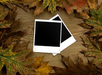 Blank polaroid frames over autumn background